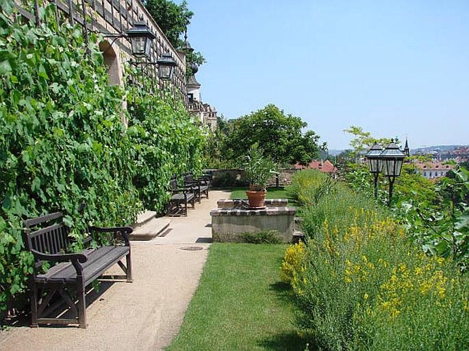 Velká Pálffyovská zahrada