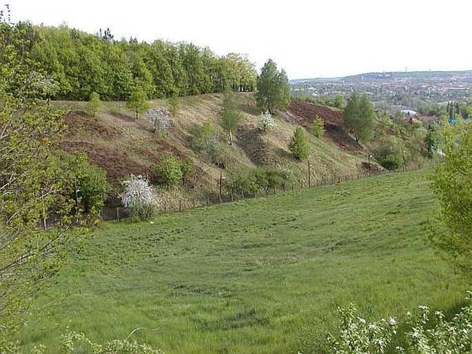 Petice proti stavební činnosti Botanické zahrady v Praze-Troji