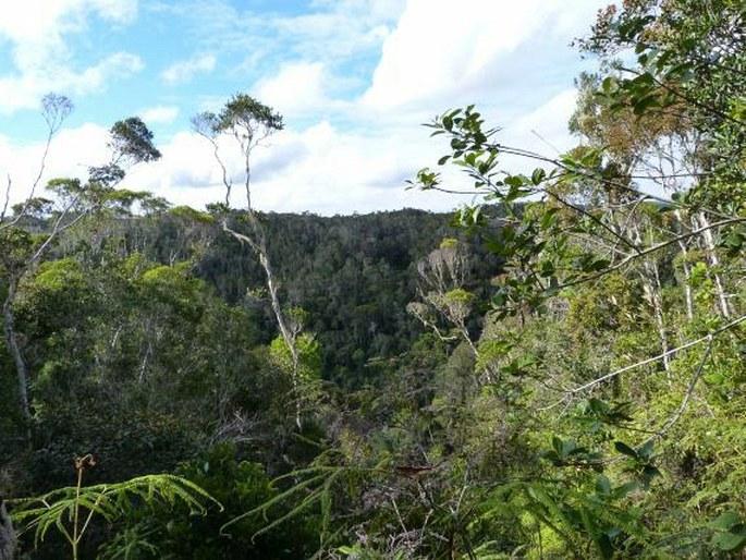 Madagaskar seznamovací web